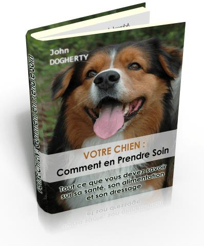 Votre chien: comment en prendre soin | | | paguja-ebook